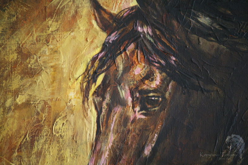 """Friesian horse Kaspar"""
