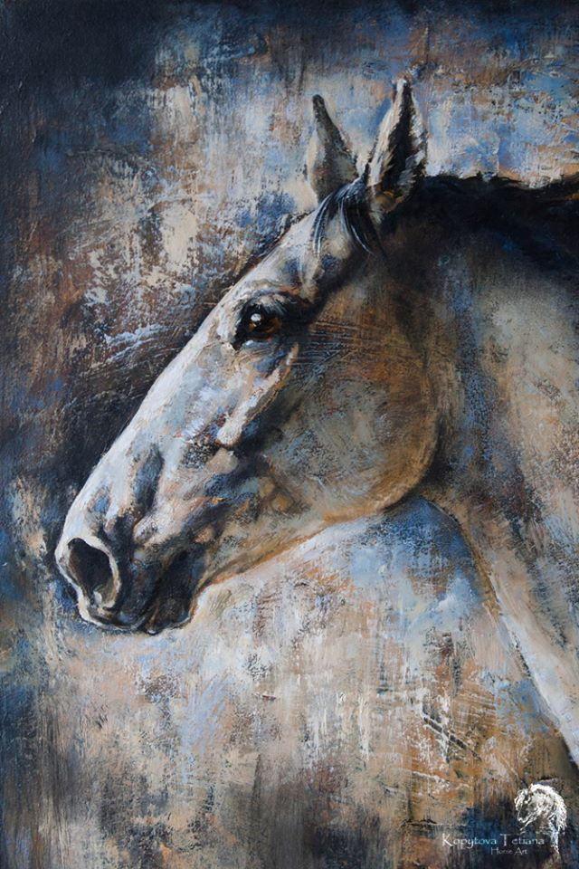 """""""Private Lipizzan horse portrait"""""""