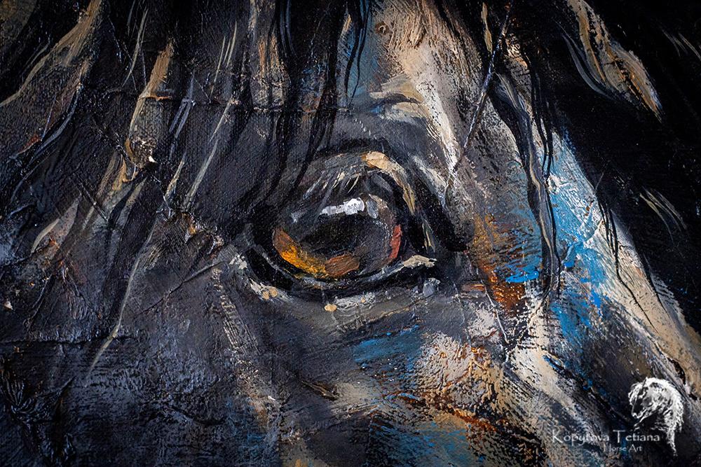 """""""Lusitano stallion Ivan"""""""