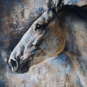 """Private Lipizzan horse portrait"""